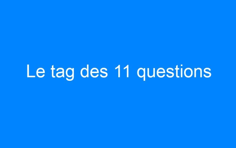 Le tag des 11 questions