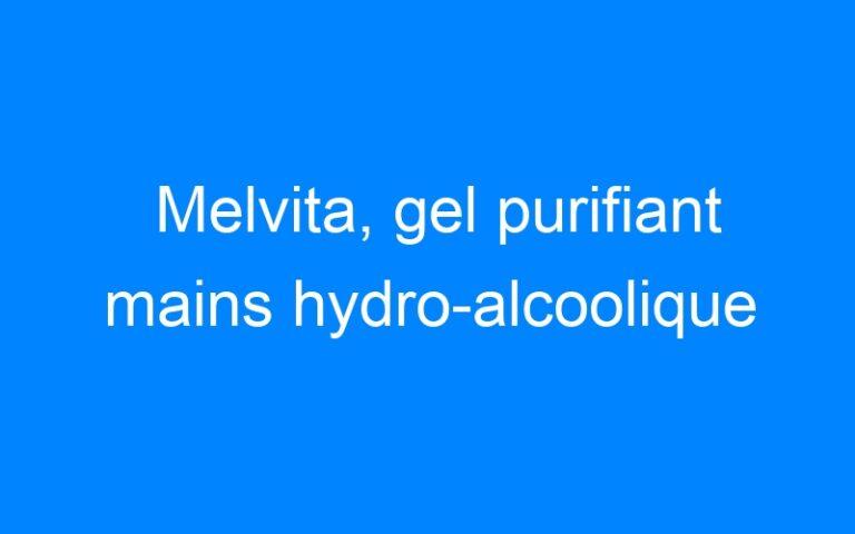 Melvita, gel purifiant mains hydro-alcoolique