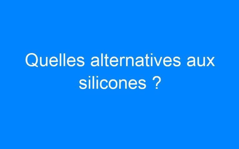 Quelles alternatives aux silicones ?